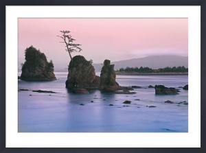 Pacific Coast by Elizabeth Carmel