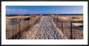 Pathway to the Beach by Joseph Sohm