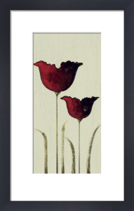 Tulips II by Nicola Evans