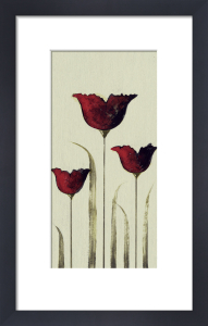 Tulips III by Nicola Evans