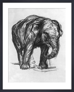 Elefant,1907 by Franz Marc