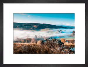 Above Falston Morning by Scott Dunwoodie
