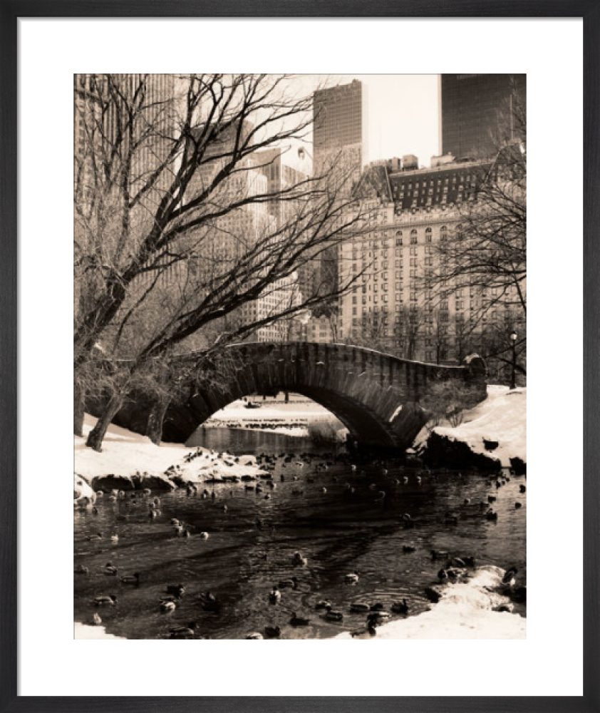 Central Park Bridges 4 Art Print By Christopher Bliss King Mcgaw