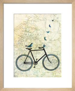 Bike Country by Marion McConaghie