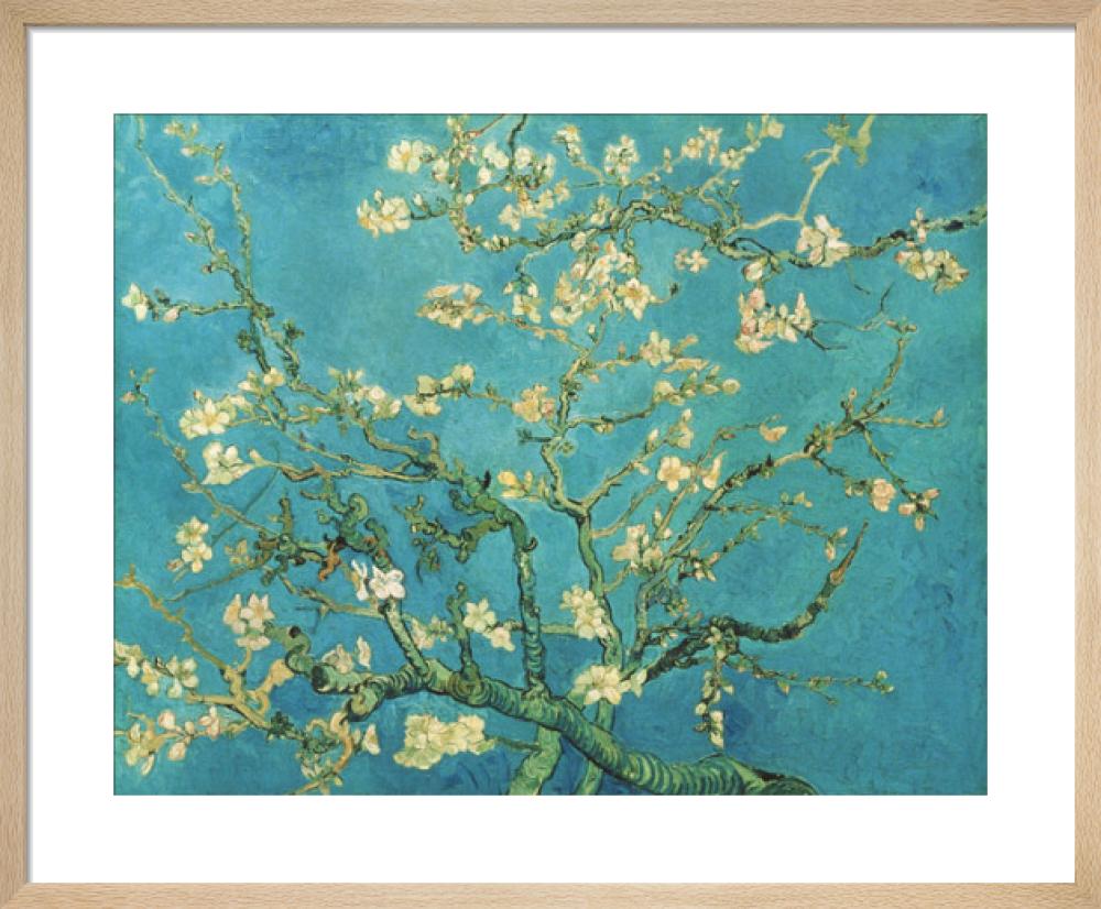 Almond Blossom 1890 Art Print By Vincent Van Gogh King