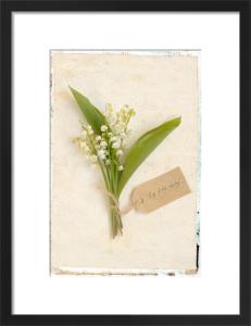 Lily of the Valley by Deborah Schenck