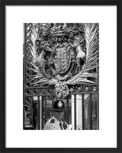 Royal bobby, Buckingham Palace by Niki Gorick