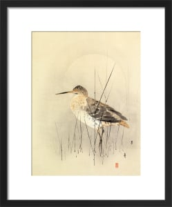 Godwit by Anonymous Chinese Artist