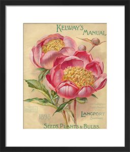 Kelway's Manual. Plants, Seeds and Bulbs by Kelways