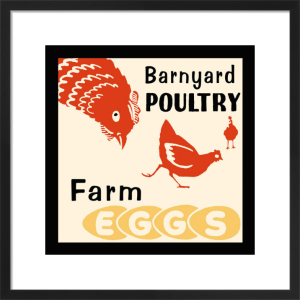 Barnyard Poultry-Farm Eggs by Retro Series