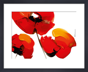 3 Poppies on White by Tibi Hegyesi