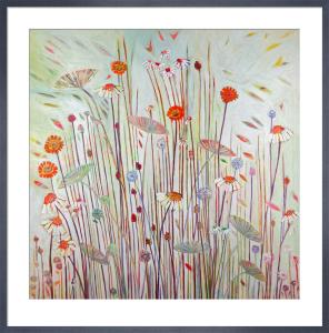Daisy May by Shyama Ruffell