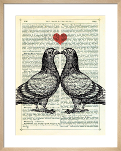 Pigeons in Love by Marion McConaghie