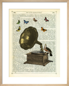 Gramophone, Bird and Butterflies by Marion McConaghie