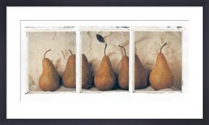 Pear Triptych by Deborah Schenck