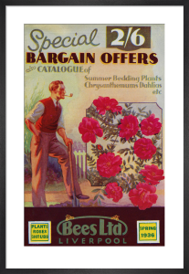 Special Bargain Offers by Bees Ltd