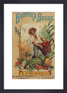 Back Cover of Burpee's Seeds catalogue by Burpees
