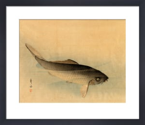 Carp by Anonymous Chinese Artist