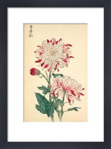 Azuma Shibori by Keikwa Hasegawa