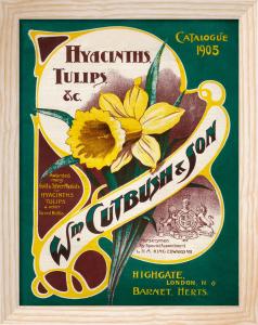 Catalogue 1905 by William Cutbush & Son