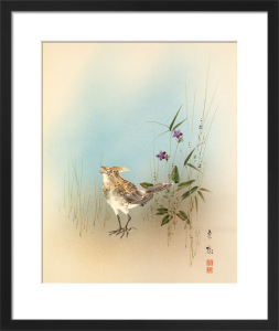 Crested Lark in Grass by Anonymous Chinese Artist
