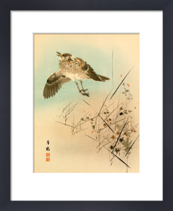 Crested Lark Taking Wing by Anonymous Chinese Artist