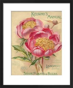 Kelway's Manual. Plants, Seeds and Bulbs by Kelways