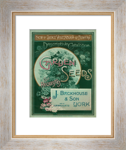 Garden Seeds and Requisites by J. Backhouse and Son