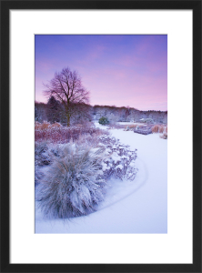 The Main Borders in Winter at RHS Garden Harlow Carr, Yorkshire. by Lee Beel