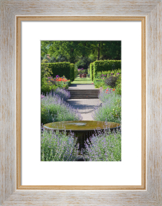 View of the Country garden at Wisley by Carol Sheppard