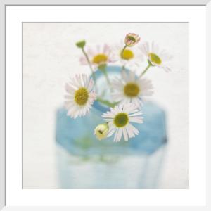 Peace by Deborah Schenck