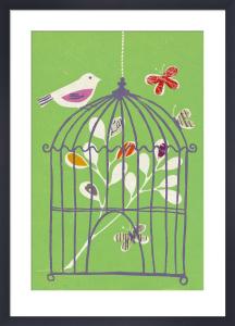 Bird on Cage by Fiona Howard