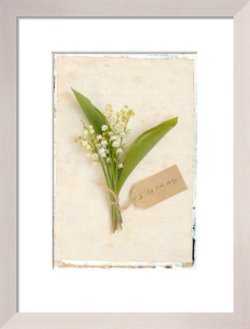 Lily of the Valley by Deborah Schenck