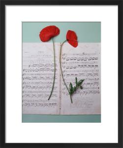 Music and Poppies by Deborah Schenck