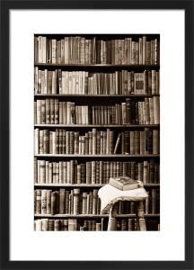 The Library by Deborah Schenck
