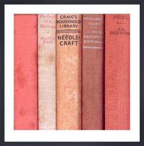 To Read in Red by Deborah Schenck