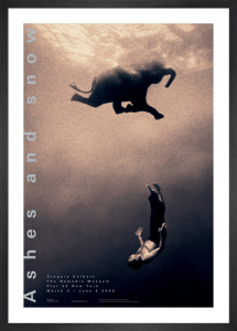 Gregory Swimming with Elephant by Gregory Colbert