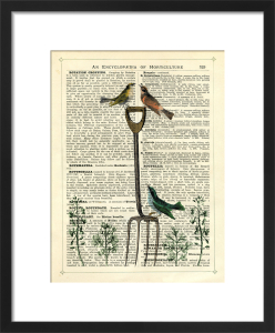 Garden Fork and Birds by Marion McConaghie