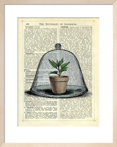 Plant Pot in Glass Cloche by Marion McConaghie