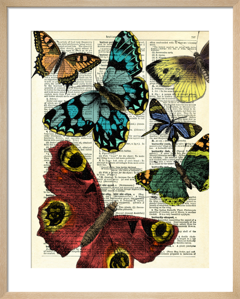 8f1a2bd3a Selection of Butterflies Art Print by Marion McConaghie | King & McGaw