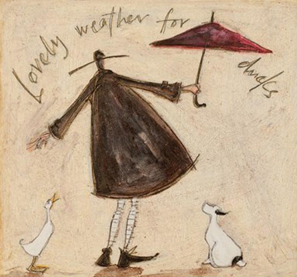 lovely weather for ducks sam toft