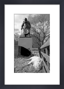 Winston and the pig, Parliament Square by Niki Gorick