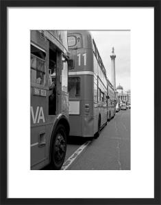 Doubledeckers up to Trafalgar Square by Niki Gorick