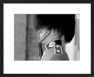 Guardsman, St. James' Palace by Niki Gorick