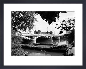 Thames view, Battersea Power Station by Niki Gorick