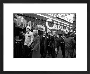 Wildlife, Camden Market by Niki Gorick