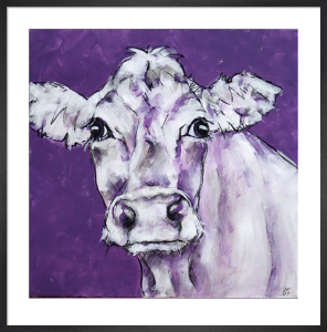 Cow on Purple by Nicola King