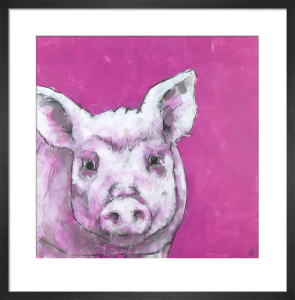 Pig on Pink by Nicola King