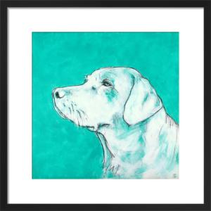 Labrador on Turquoise by Nicola King