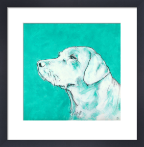 Labrador on Turquoise by Nicola King
